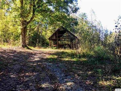Sevierville Residential Lots & Land For Sale: Parcel 134.01 Jones Cove Rd