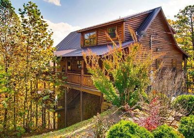 Sevierville Single Family Home For Sale: Raccoon Hollow Way