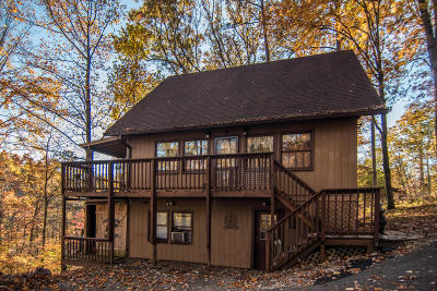 Sevierville Single Family Home For Sale: 2216 Headrick Lead