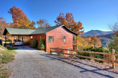 Sevierville Single Family Home For Sale: 2725 Heather Lane Way