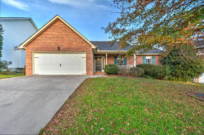 Knoxville Single Family Home For Sale: 2536 Sable Point Lane