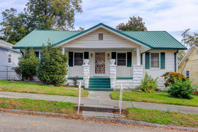 Knoxville Single Family Home For Sale: 1816 Luttrell St