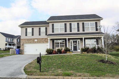Knoxville Single Family Home For Sale: 1753 Point Wood Drive