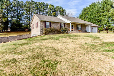 Friendsville Single Family Home For Sale: 133 Disco Loop Rd