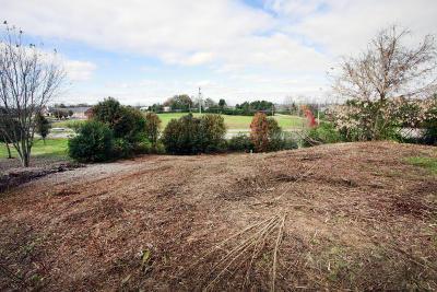 Knoxville Residential Lots & Land For Sale: 10411 Omari Ridge Way