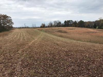 Greenback Residential Lots & Land For Sale: 675 Niles Ferry Rd