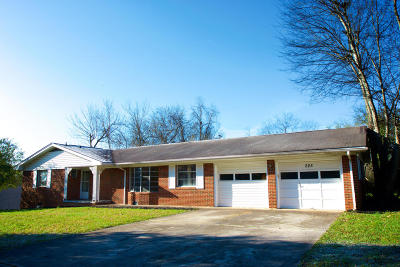 Knoxville Single Family Home For Sale: 225 Carta Rd