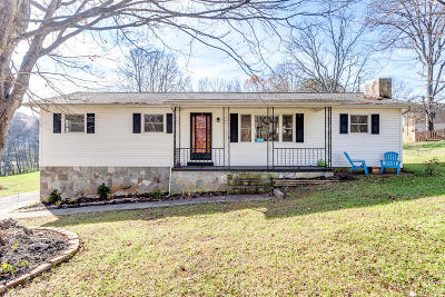 Knoxville Single Family Home For Sale: 3917 Bud McMillan Rd