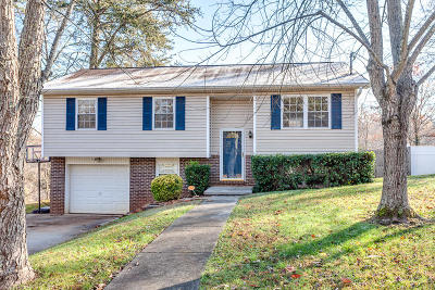 Knoxville Single Family Home For Sale: 4124 Mascarene Rd