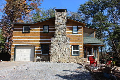 Sevierville Single Family Home For Sale: 3009 Oak Hill Rd
