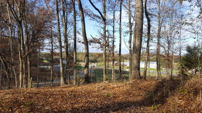 Sevierville Residential Lots & Land For Sale: 1503 Ridge Rd
