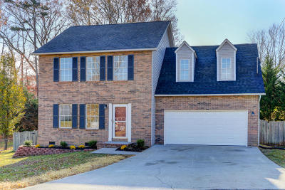 Knoxville Single Family Home For Sale: 7308 Carowinds Lane