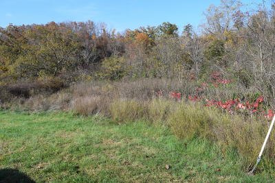 Bean Station Residential Lots & Land For Sale: Lot 1 & 2 Rhonda's Way