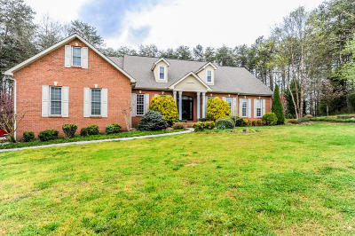 Maryville Single Family Home For Sale: 323 Norton Pond Rd