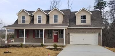 Knoxville Single Family Home For Sale: 3001 Oakleigh Township Drive