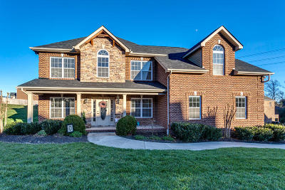 Knoxville Single Family Home For Sale: 8501 Coral Sands Lane