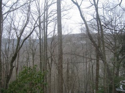 Monterey TN Residential Lots & Land For Sale: $69,900