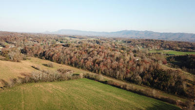 Maryville Residential Lots & Land For Sale: 4220 Wildwood Rd