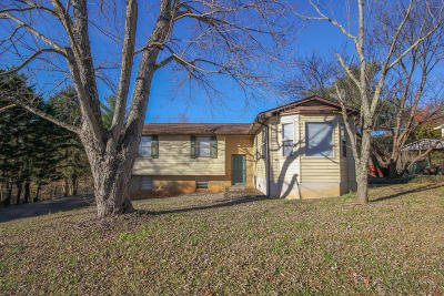 Friendsville Single Family Home For Sale: 4114 Big Springs Ridge Rd