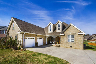 Lenoir City Single Family Home For Sale: 1311 Yosemite Drive