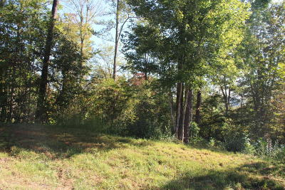 Residential Lots & Land For Sale: 51 E Poplar Lane
