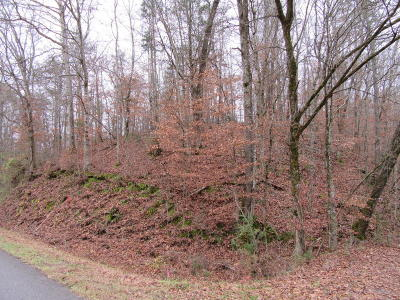 Clinton Residential Lots & Land For Sale: E Wolf Valley Rd