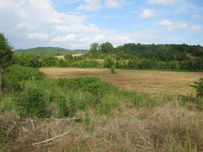 Blount County Residential Lots & Land For Sale: W Lamar Alexander Pkwy