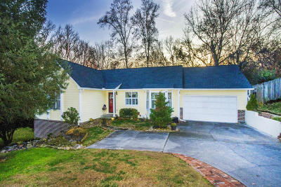 Knoxville Single Family Home For Sale: 9509 Ravenwood Circle