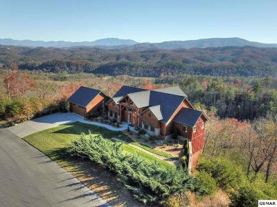 Sevierville Single Family Home For Sale: 3060 Misty Bluff Trail