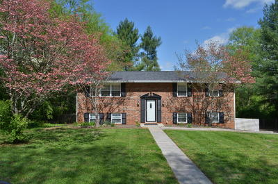 Knoxville Single Family Home For Sale: 1216 April Drive
