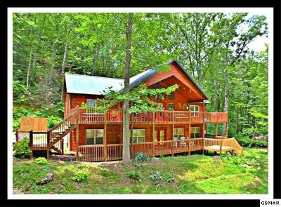 Sevierville Single Family Home For Sale: 4130 High Ridge Way