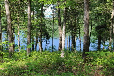 Overlook Bay Residential Lots & Land For Sale: Lot 136 Saddleridge Drive