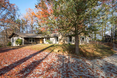 Sevier County Single Family Home For Sale: 1051 Topside Drive