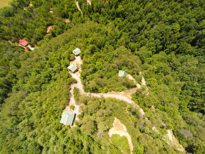 Blount County Single Family Home For Sale: 120 Pauley Gap Road Rd