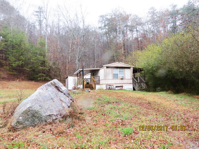 Grainger County Single Family Home For Sale: 3354 Poor Valley Rd