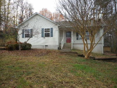 Friendsville Single Family Home For Sale: 3911 Freels Rd