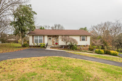Knoxville Single Family Home For Sale: 1940 Grenada Blvd
