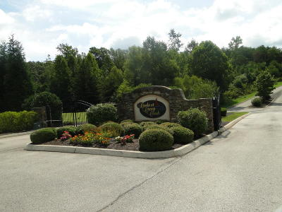 Meigs County, Rhea County, Roane County Residential Lots & Land For Sale: Lot 43 Serenity Drive