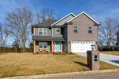 Knoxville Single Family Home For Sale: 7802 Lake Mountain Lane