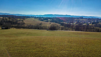 Seymour Residential Lots & Land For Sale: 5701 Nails Creek Rd