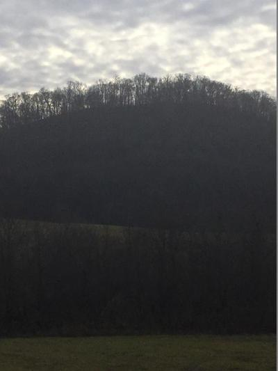 Rogersville Residential Lots & Land For Sale: 0 Hickory Cove Rd