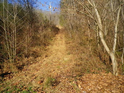 Clinton Residential Lots & Land For Sale: Seivers Lane