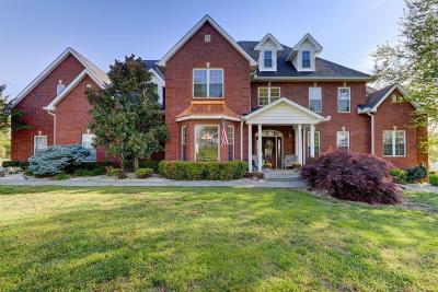 Sevierville Single Family Home For Sale: 1779 Harrisburg Mill Rd