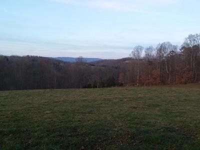 Tazewell Residential Lots & Land For Sale: Bacchus