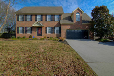 Knoxville Single Family Home For Sale: 7424 Royal Springs Blvd