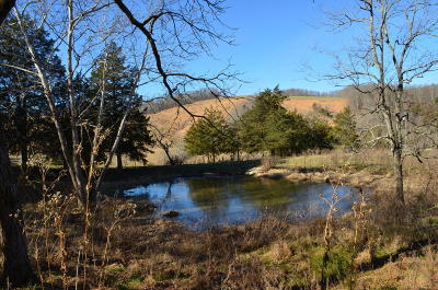 Grainger County Residential Lots & Land For Sale: 00 Dry Valley Rd 18ac