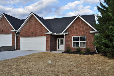 Sevierville Condo/Townhouse For Sale: 1016 Woullard Way