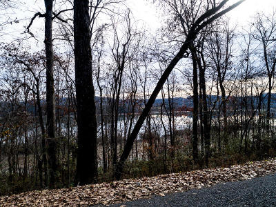 Meigs County, Rhea County, Roane County Residential Lots & Land For Sale: Lakeshore Vista