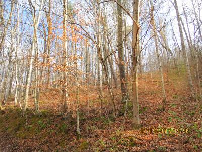 Jacksboro Residential Lots & Land For Sale: Lot #9 Gardner Lane