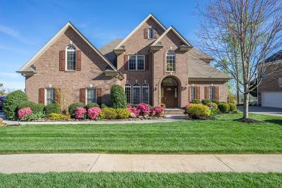 Knoxville Single Family Home For Sale: 224 Brooke Valley Blvd